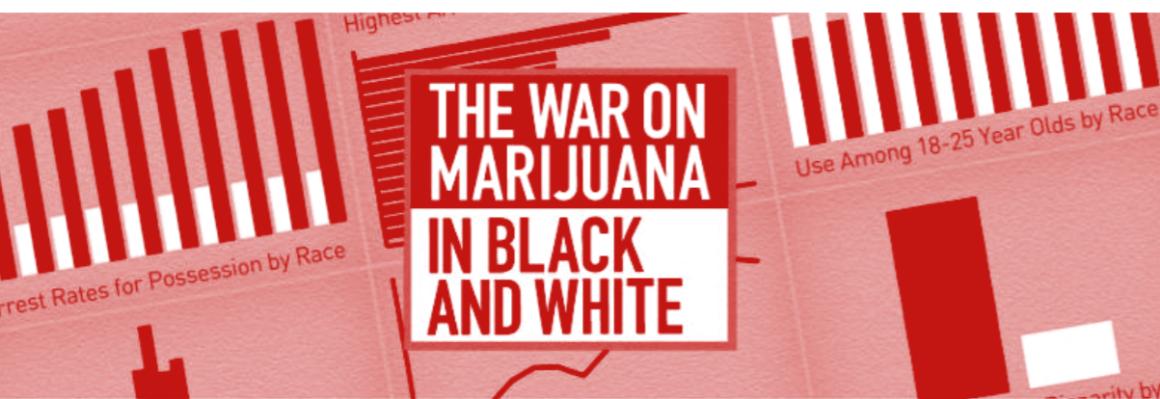 The War on Marijuana