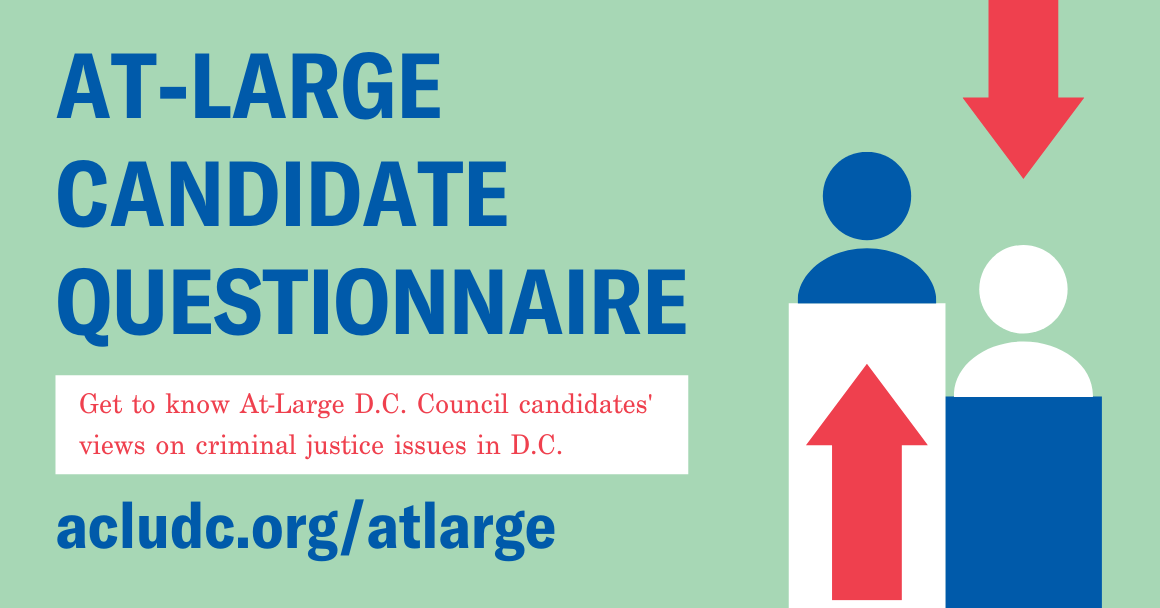 graphic for at large candidate questionnaire